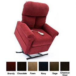Easy Comfort LC-100 Lift Chair (Brandy)
